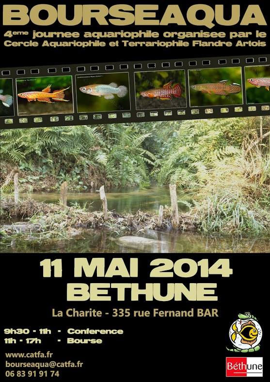 Bourse de Béthune  10154910