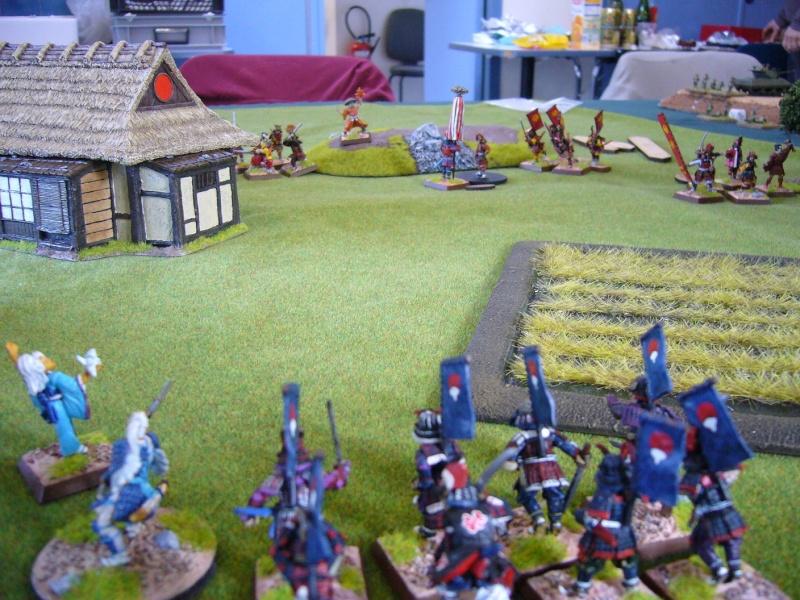 09/02/14 - Bataille entre les Phoenix et les Grues Sam0910