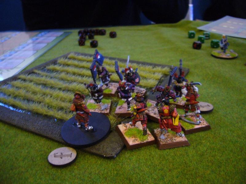 09/02/14 - Bataille entre les Phoenix et les Grues Sam1510
