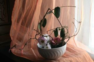 un petit essai d'arrangement Ikebana  Arrang10