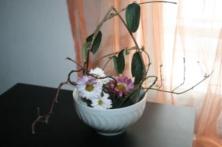 un petit essai d'arrangement Ikebana  Img_8110