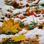 Первый Снег 1110