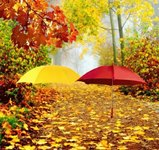 Зонтики в разных фантазиях W8zhub11