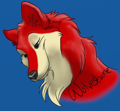 Emi the War Wolf Emi_ic12
