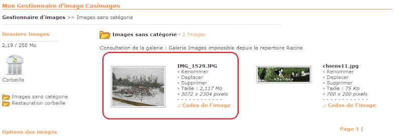 Tutoriel pour poster une image ou photo avec Servimg et Casimage Casima18
