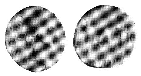 Les monnaies anonymes des guerres civiles 68/69 AD - Page 3 40v10