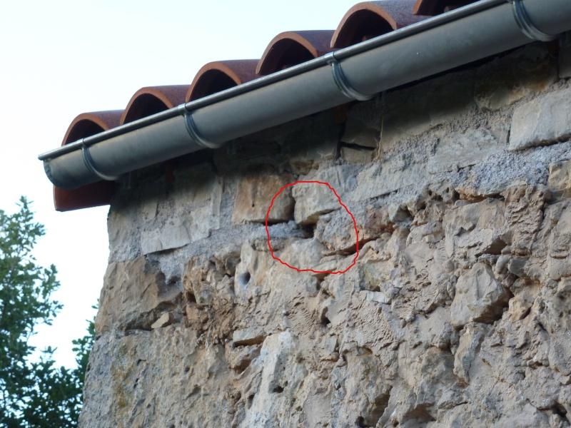 Nid de guêpes sous toiture / accès intérieur Nid-ex11
