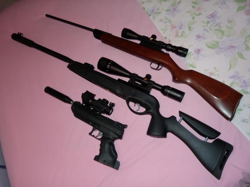 Ma nouvelle carabine: Gamo Whisper Fusion IGT version US P1020710