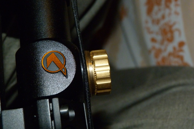 Ma nouvelle carabine: Gamo Whisper Fusion IGT version US P1020722
