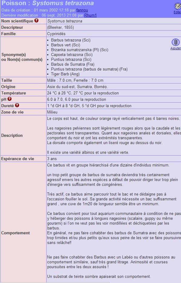 Systomus tetrazona (barbus de sumatra) 226