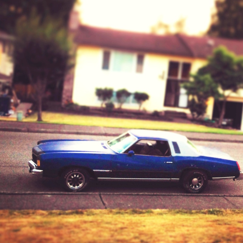 My 75 Monte carlo  Photo_19