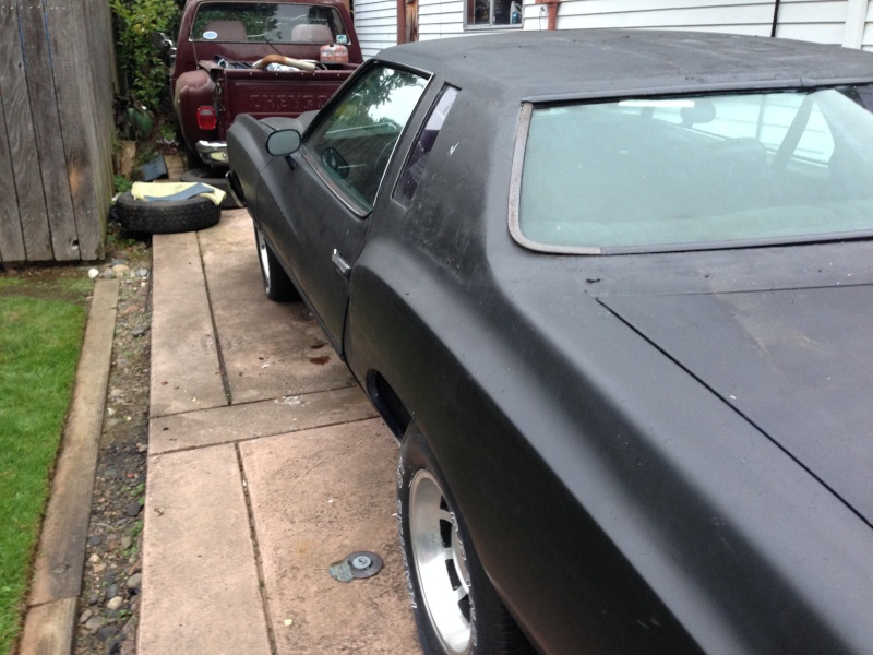 My 75 Monte carlo  Photo_38
