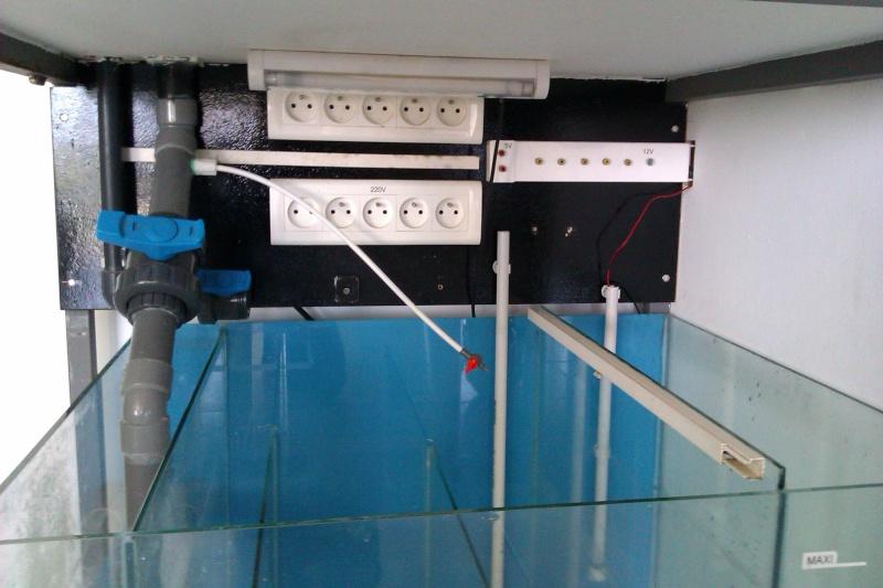 Projet Bac récifal de 350L  Imag0310