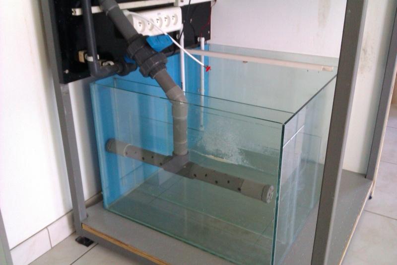 Projet Bac récifal de 350L  Imag0311