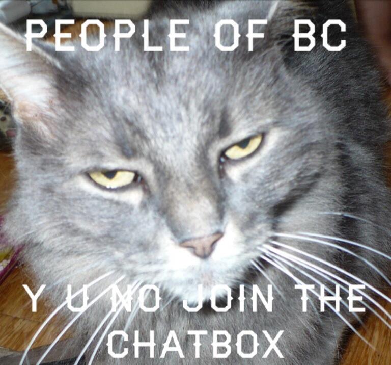 Faye's Blog! please read <33 Cat_me10