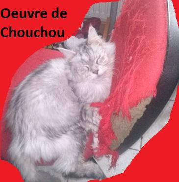 Mes nounours !! ( chiens et chats ^^ ) Cam15810