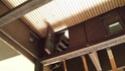 nera - cantiere perla nera 20131214