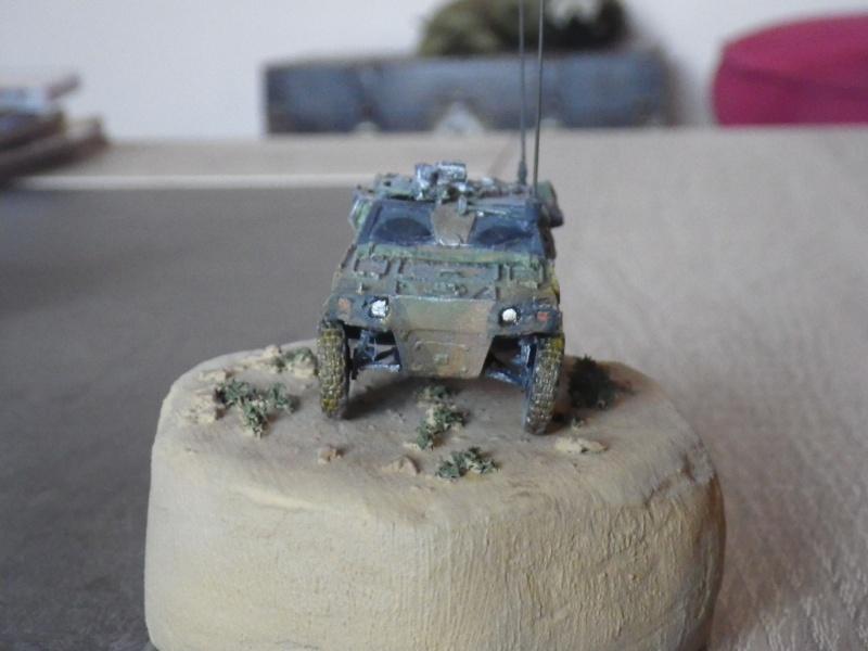 VB2L Panhard (ADV Mini 1/72) Imgp0916