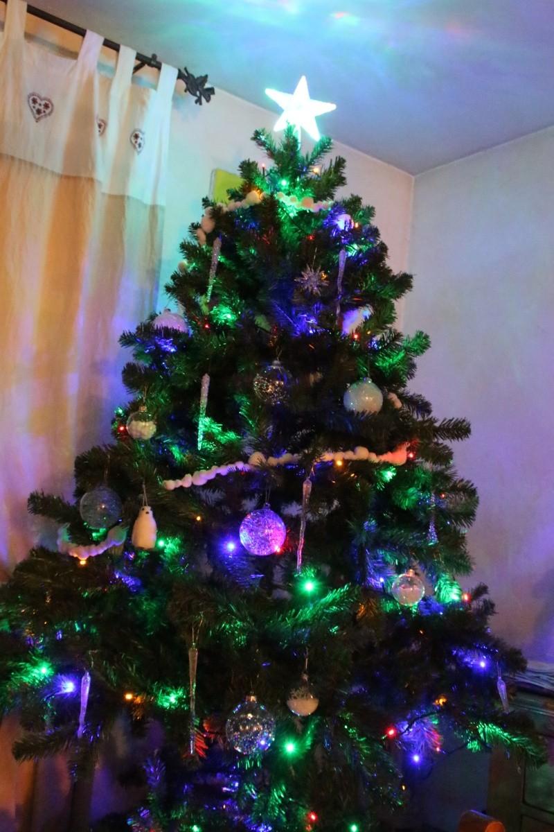 C'est bientôt Noël: montre moi ton sapin  !!  - Page 2 Img_1813