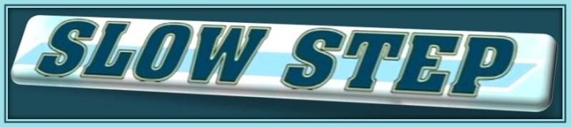 Slow Step [1991] [OAV] Logo_119