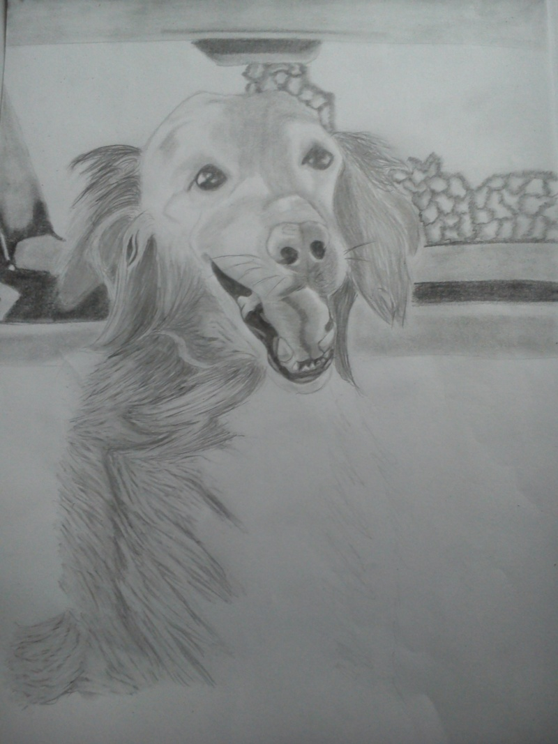 Mon chien Titoune <3 Ti210