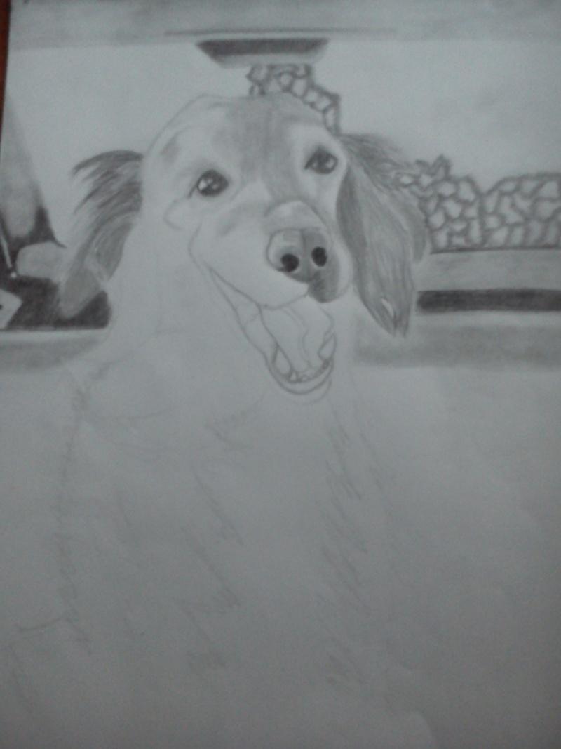 Mon chien Titoune <3 Uov12
