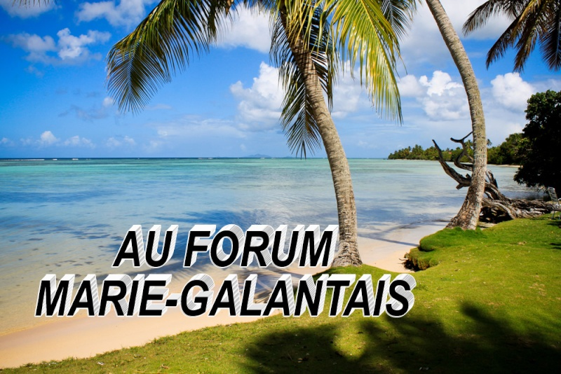 Au Forum  Marie-Galantais