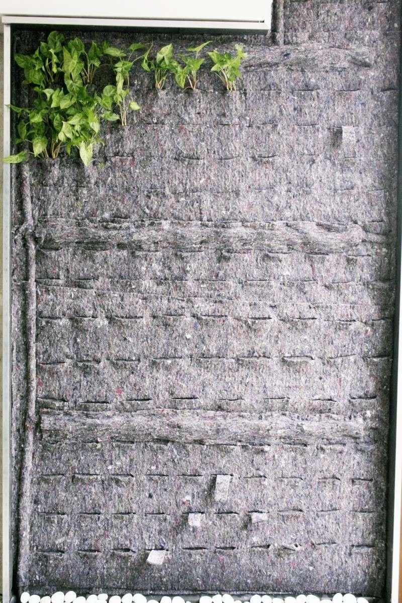 [PROJET TERMINE] Mur végétalisé 1.35m / 3.10m de haut maxi 20120410