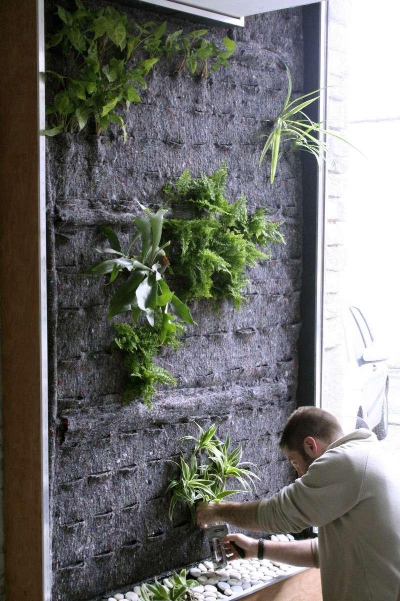 [PROJET TERMINE] Mur végétalisé 1.35m / 3.10m de haut maxi 20120411