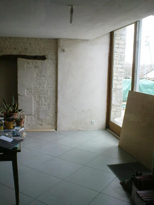 [PROJET TERMINE] Mur végétalisé 1.35m / 3.10m de haut maxi Dsc00910