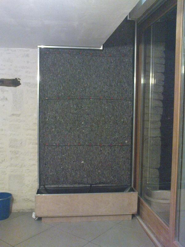[PROJET TERMINE] Mur végétalisé 1.35m / 3.10m de haut maxi Dsc01012