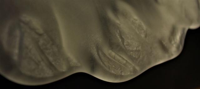 Vase en forme de corolle  Dsc_5962