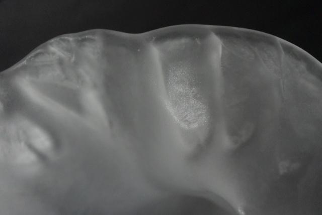 Vase en forme de corolle  Dsc_5963