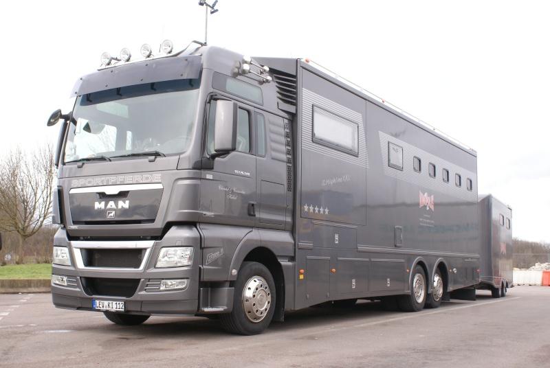 Transports de chevaux - Page 4 Dsc02122