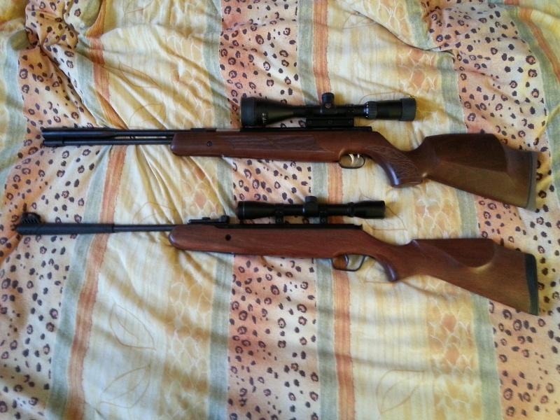 mes carabines 20131216