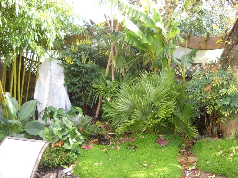 mon jardin dans le 77 - Page 2 Dscn3051