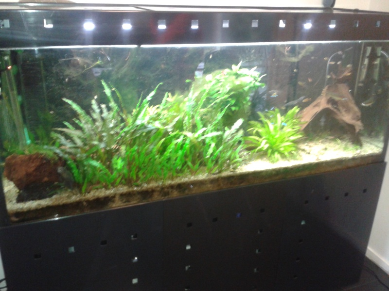 [Vends] aquarium 560l externe 20140112