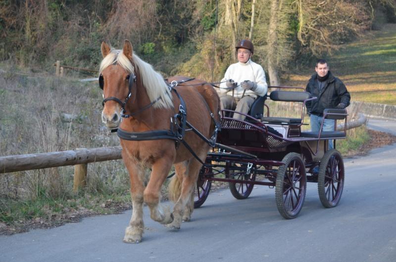 Valseur et Jean-Louis MOULEYRE Dsc_1111