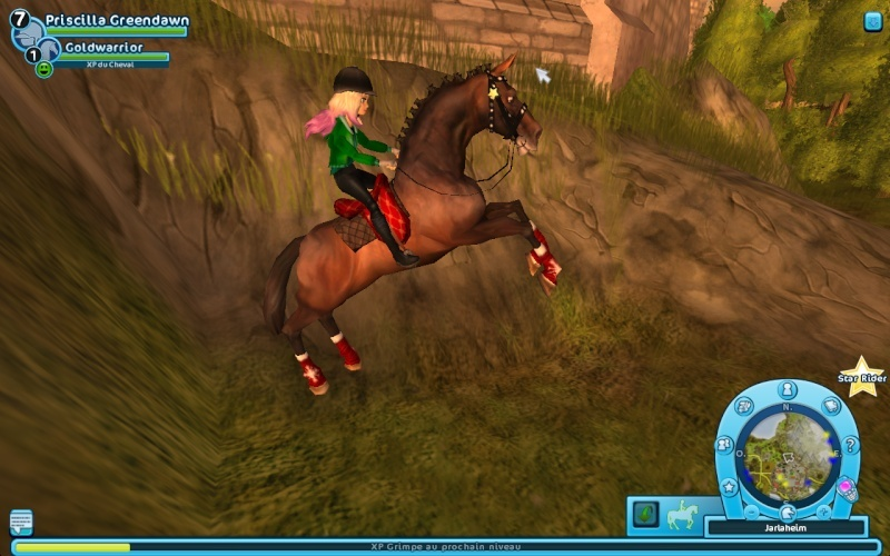 Star Stable (MMO) - Page 2 Captur12