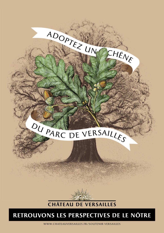 Les arbres admirables du domaine de Versailles 1ere_d10
