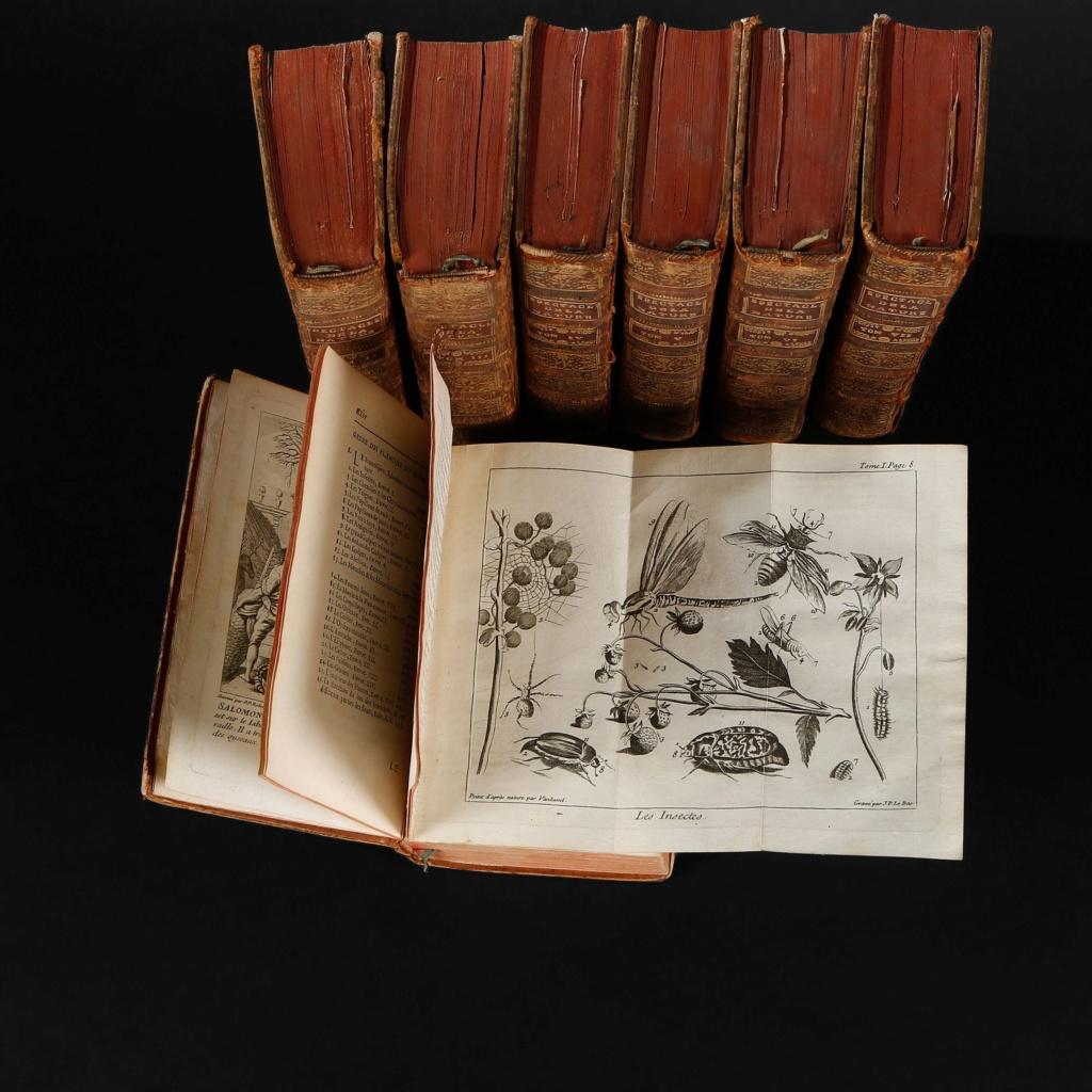 """Madeleine-Françoise Basseporte (1701-1780), première femme """" Peintre du jardin du Roi """" 2500x210"""