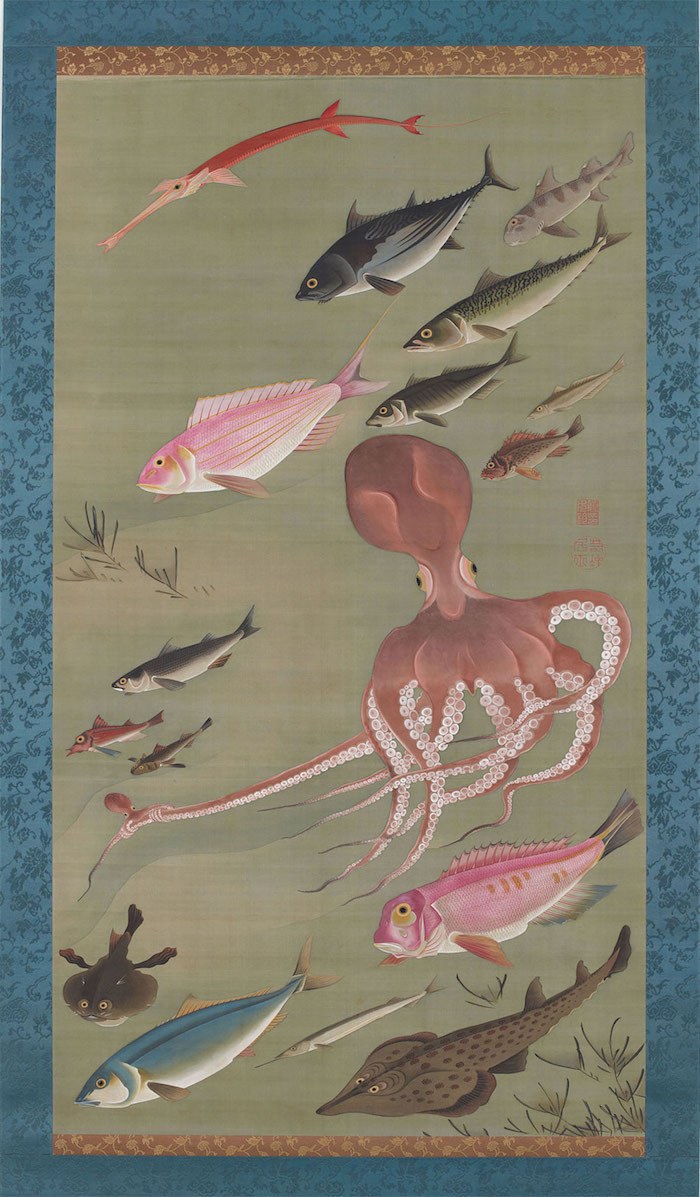 Exposition : Jakuchū (1716-1800), le Royaume coloré des êtres vivants 27_fis10