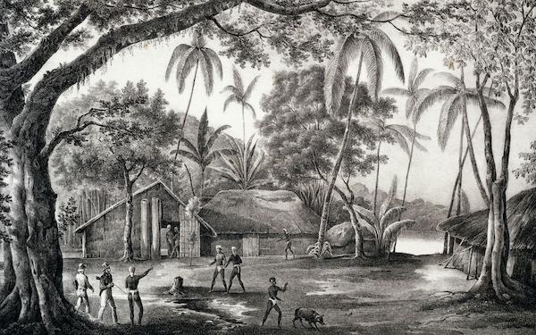 Jean-François de la Pérouse et l'expédition Lapérouse - Page 3 78608210