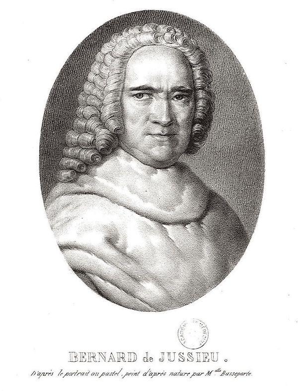 """Madeleine-Françoise Basseporte (1701-1780), première femme """" Peintre du jardin du Roi """" Anmpx111"""