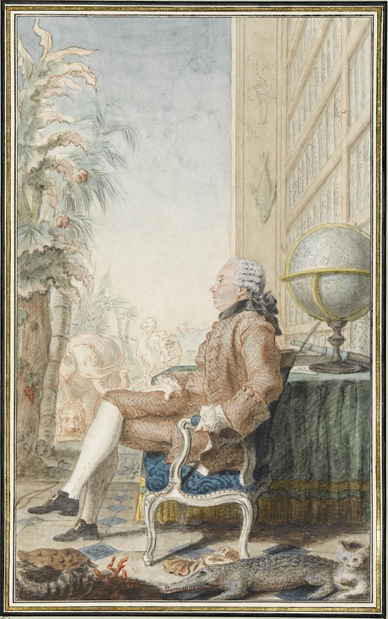 buffon - Georges-Louis Leclerc, comte de Buffon Buffon15