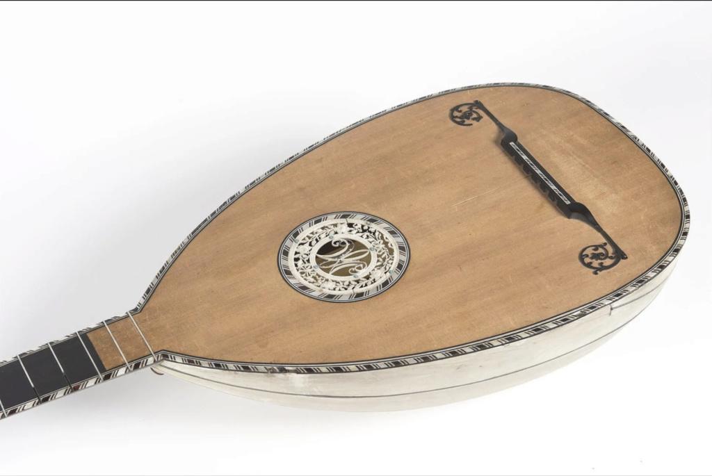 Une guitare-luth (et non pas une mandoline) ayant appartenu à Marie-Antoinette ?  - Page 2 Capt1108