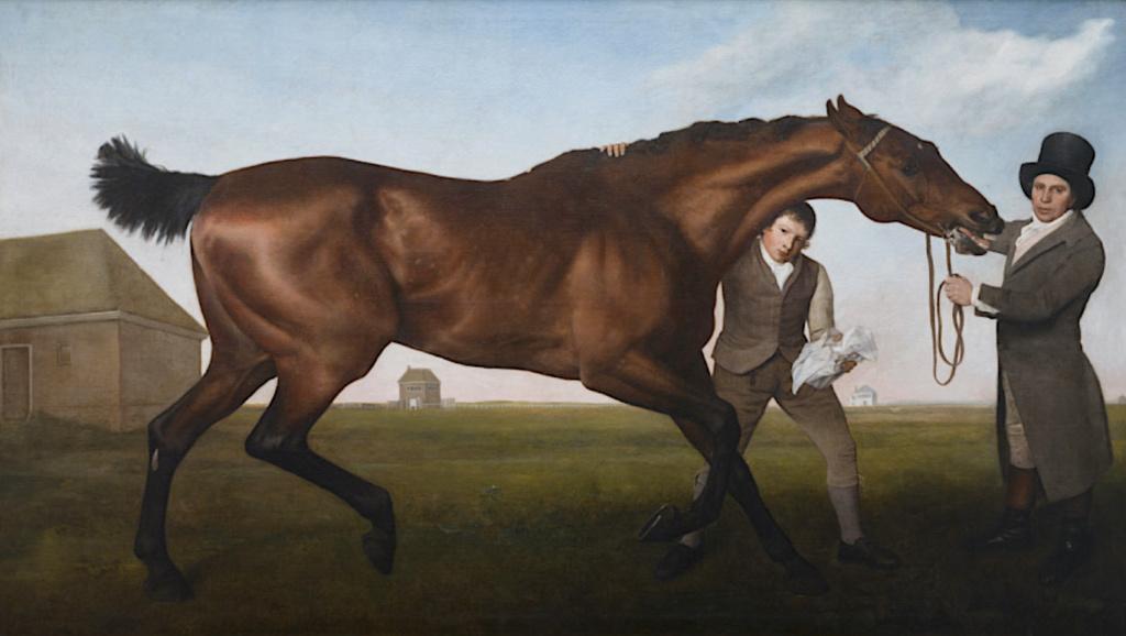 George Stubbs : artiste peintre et anatomiste.  Capt1293