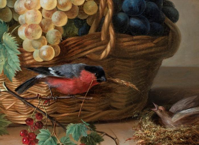La peinture des fleurs : Sophie de Fuligny-Damas, marquise de Grollier Captu238