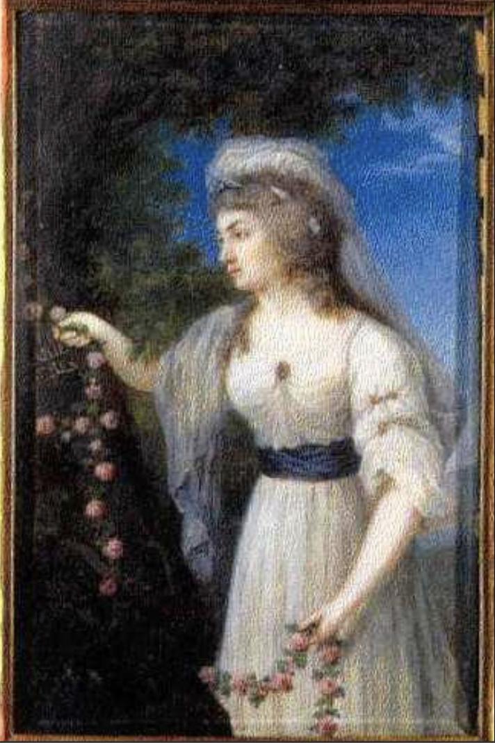 Louise-Henriette-Caroline de Hesse-Darmstadt, une amie de Marie-Antoinette - Page 2 Captu328