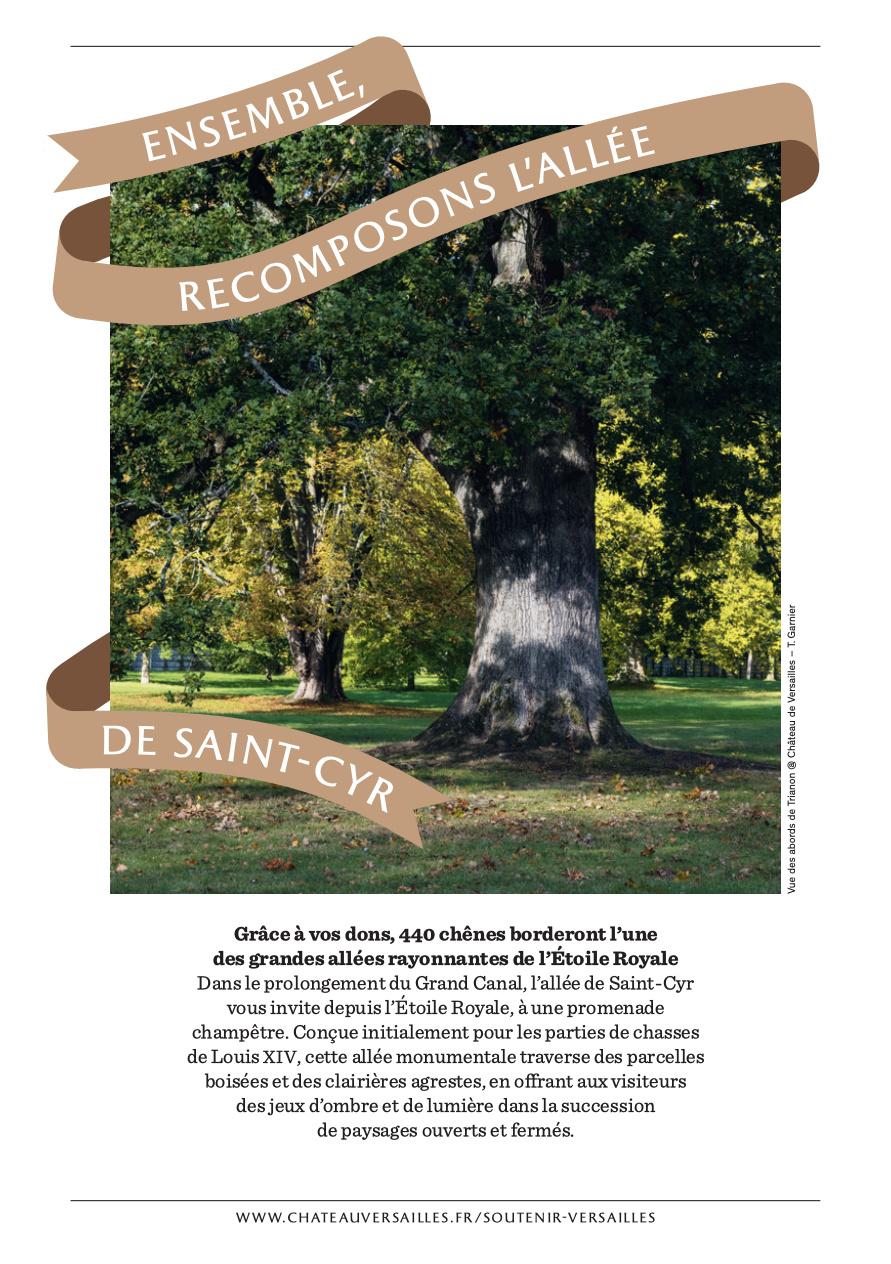 Les arbres admirables du domaine de Versailles Captu541